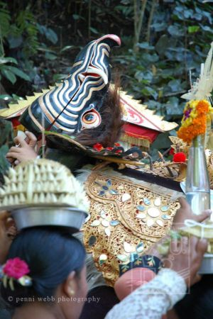 Jungle offerings 17 wm.jpg