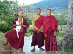 Three Monks & Cat.jpg