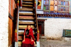 23._Monk_on_stairway_wm