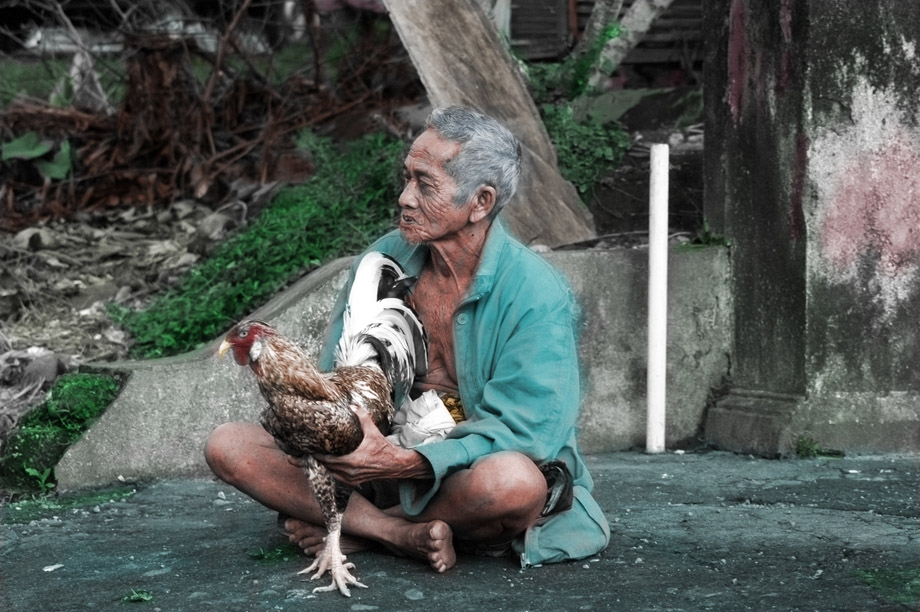 Man w/ fighting Rooster
