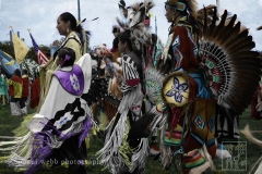 Pow Wow family, NM
