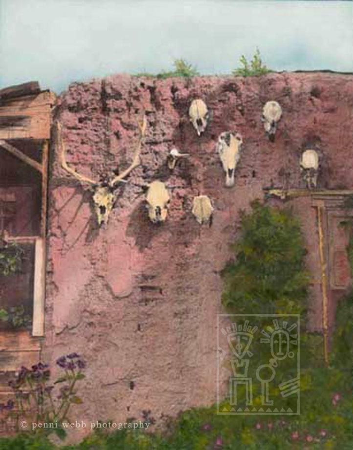 Hand painted photograph Skulls  Chimayo  NM