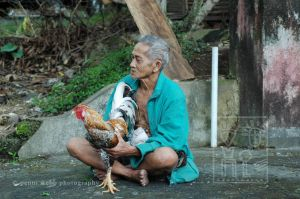 Man & Rooster 104  6 wm.jpg